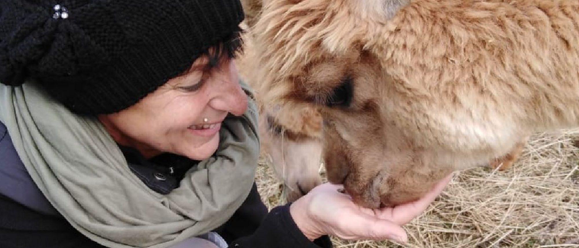 Tiergestützte Aktivitäten am Alpakas-Wörtherhof in der Steiermark - EINFACH LEBENSWERT